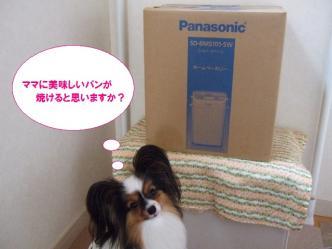 31-04_20100801210845.jpg