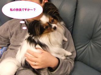 31-04_20101231223834.jpg