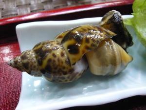 ふきのとう つぶ貝