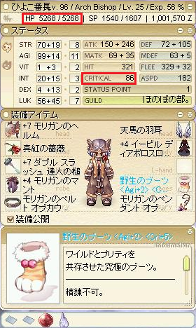 野生のブーツCri+5Agi+2