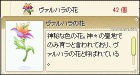 ヴァルハラの花