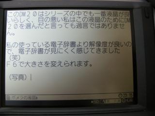 DSCN2874.jpg