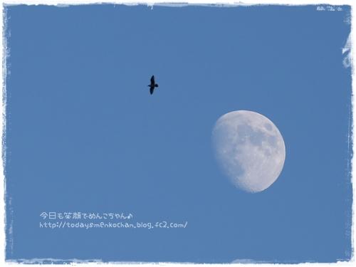 2014110304.jpg