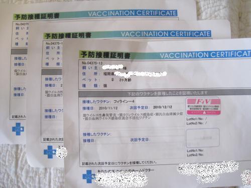 ワクチン証明書2