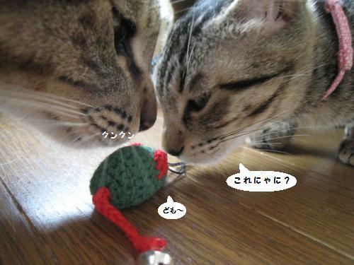 蓮とミヤちゃんと編みねずみ