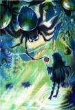 水蜘蛛と鬼灯ランプ