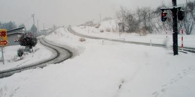 震災一周忌法要 雪