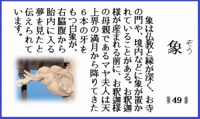 仏教豆知識シール49 象