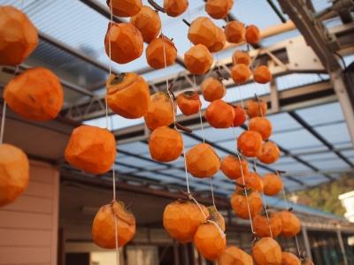 干し柿作り121018