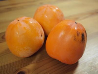 干し柿作り1211252