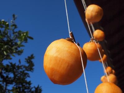 干し柿作り1211257