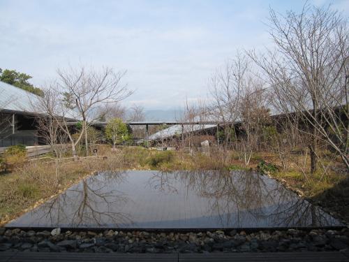 高知県立 牧野植物園-3