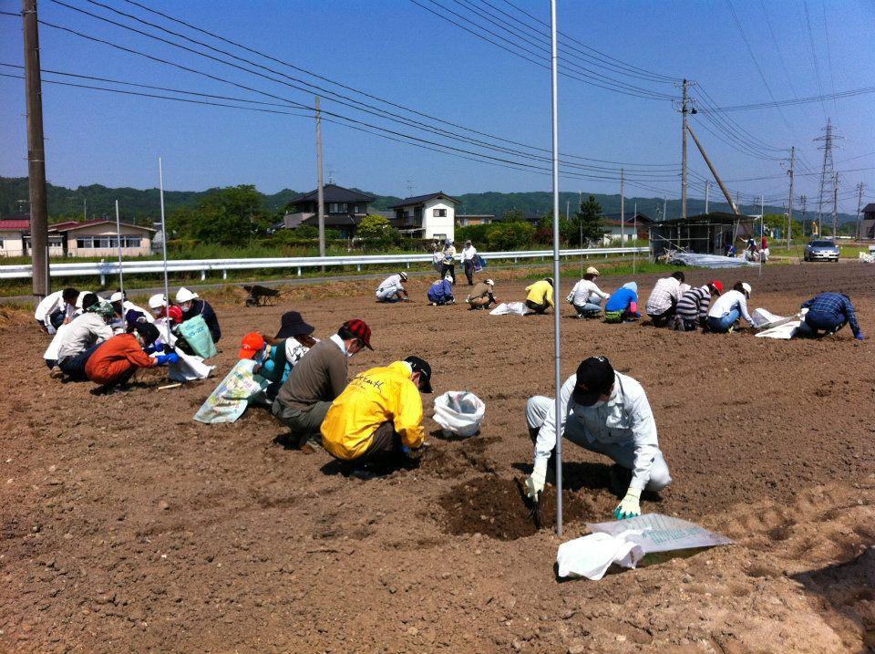 第3回、親子で震災ボランティア in MIYAGI 写真
