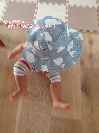 嵐丸 2014.9.23-1