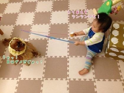嵐丸 2014.9.25-5