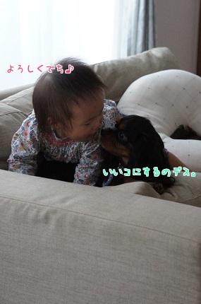 嵐丸 2014.9.27-5