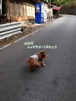 嵐丸 2014.10.12-7