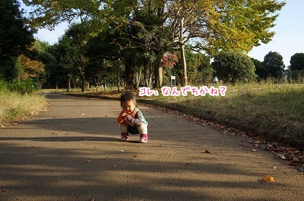 嵐丸 2014.11.9-5