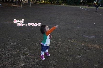 嵐丸 2014.11.9-8