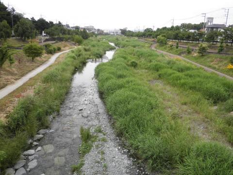 水無川99