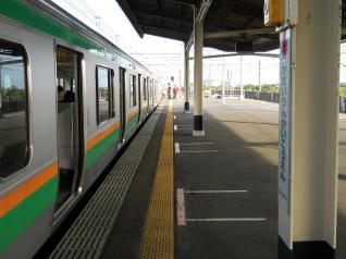 湘南色E231系IN葛西臨海公園
