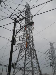 ここから電線がある20号