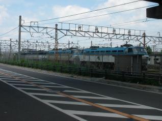 ここは、JR貨物新鶴見機関区だ!