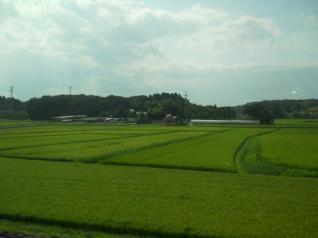 丘陵地と田園地帯