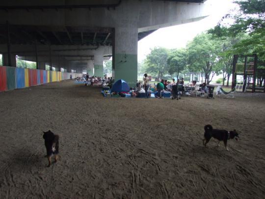浜寺公園第4駐車場