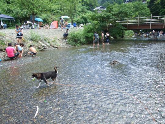 滝畑ダムキャンプ場