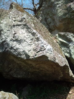 20100411-001.jpg