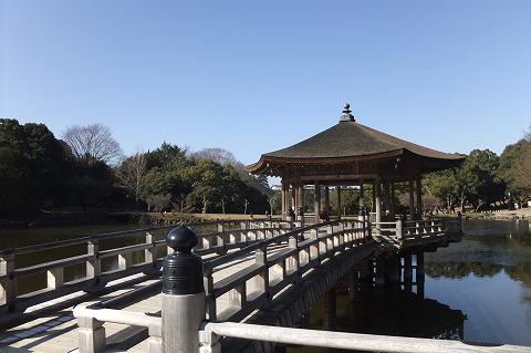 奈良公園観光 (5)