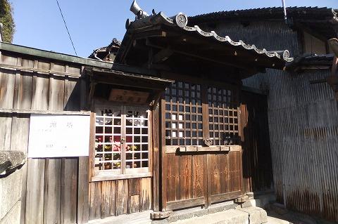 奈良公園観光 (23)