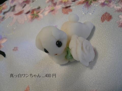 おめ目ぱっちりです(//^-^//)