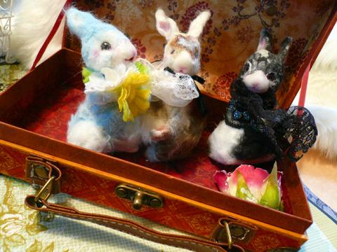 ウサギさん嬉しそう!!ですね!!