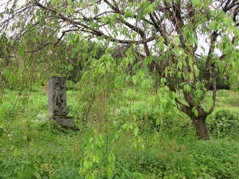矢の原一里塚跡付近の供養塔