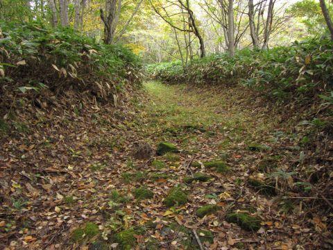 沼山坂の石畳