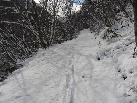 大内峠旧道
