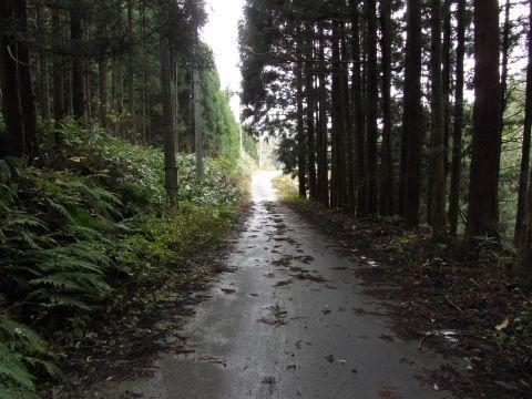 会津西街道旧道 栃沢
