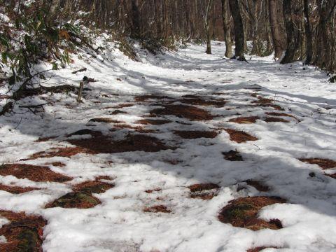 氷玉峠の石畳