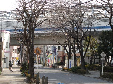 成田街道旧道 鎌倉・柴又