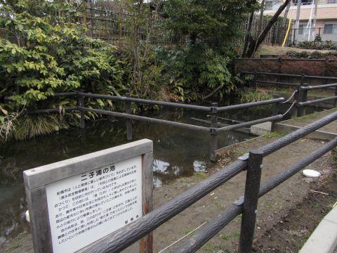 二子浦の池