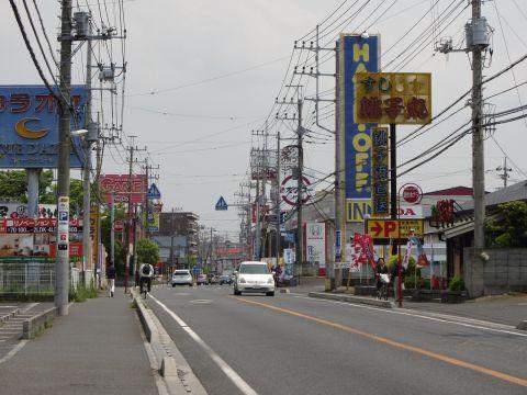 国道296号 井野町