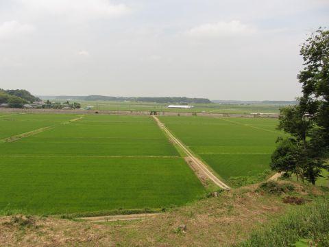 東山虎口より印旛沼方面を望む