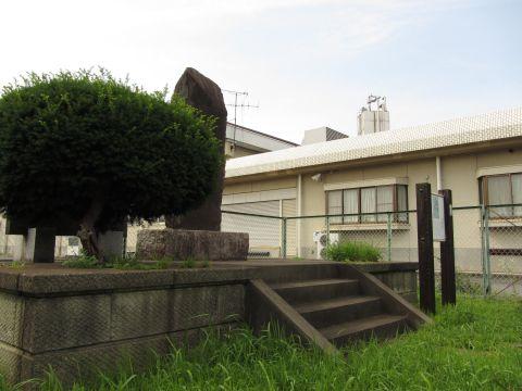 酒々井駅古松碑