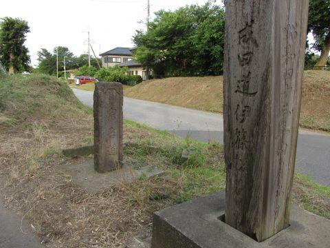 伊篠の松並木跡