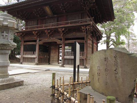 弘法寺山門と小林一茶句碑