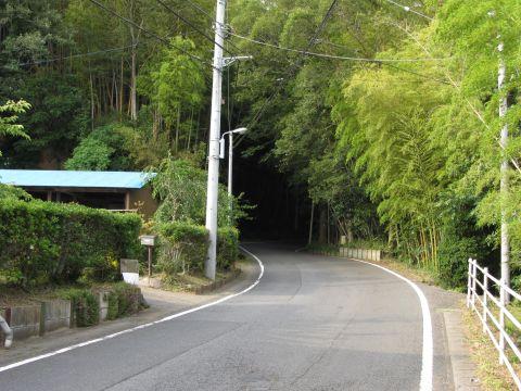 成田街道旧道 大崎の大坂