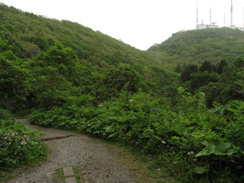 旧登山道六合目より山頂を望む