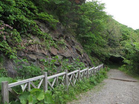 旧登山道御殿山溶岩